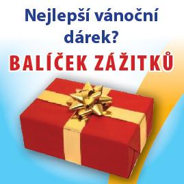 Vánoční dárek BZ
